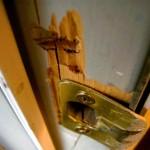 Vesoul : les cambrioleurs repartent avec l'alarme de la maison