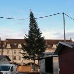 Besançon : polémique autour du sapin de Noël de la place de la révolution