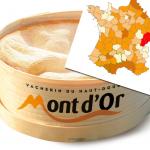 En Franche-Comté, l'espérance de vie d'un Mont d'Or est 20 fois plus faible que dans le reste du monde