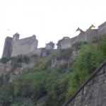Besançon : les deux girafes de la Citadelle seront bientôt euthanasiées