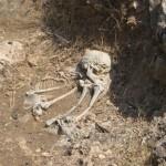 Étonnante découverte archéologique sous le pont Guillotin