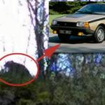 Soulagement en Haute-Saône: l'ours aperçu n'était qu'une Renault Fuego beige