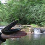 Doubs : découverte d'une moule géante dans le Gland