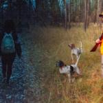La journée pour les chasseurs, la nuitpour les promeneurs : le gouvernement invente le principe de « jouissance de la forêt en temps partagé »