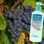 Vendanges dans le Jura: l'État réquisitionne l'intégralité de la récolte pour assurer la fabrication de gel hydroalcoolique